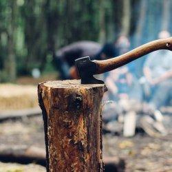 best axe for splitting wood