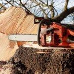 Best 20 inch chainsaw