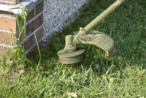 weed eater versus brush cutter