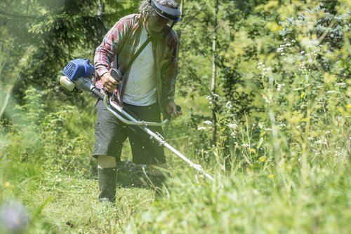 similarities between weed whacker and brush cutter