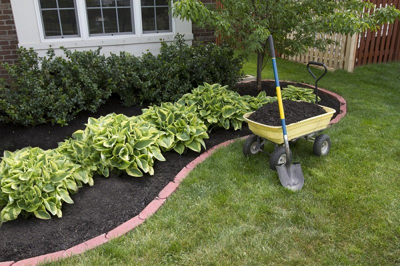 do you need to kill grass before laying mulch down