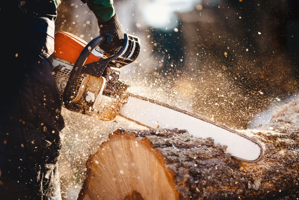 chainsaw blade cutting through wooden log