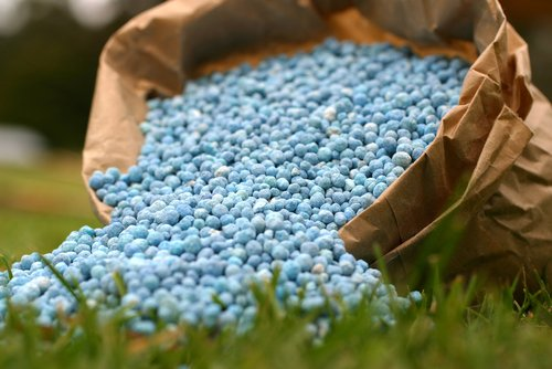 The Best NPK Values for Your Garden