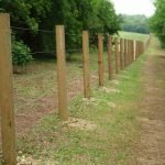 line of fence posts