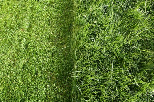 how to choose lawn mower blades for bagging and mulch